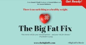 The Big Fat Fix movie